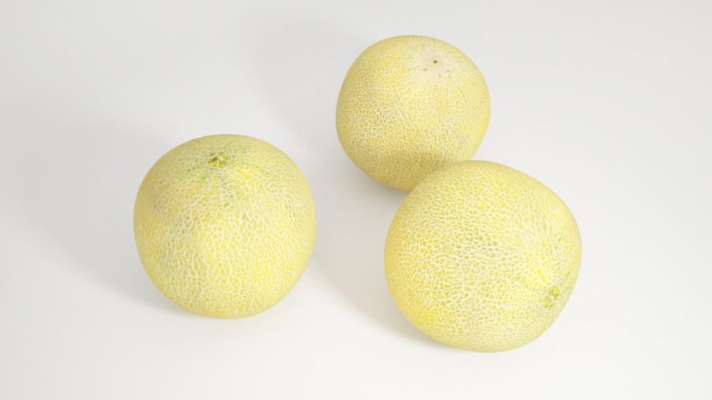 VP galia melon view 2