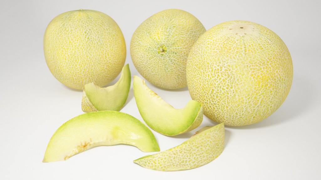 VP galia melons view 1