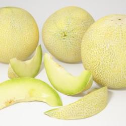 Modelos 3D Gratis XXVI | Melones Galia