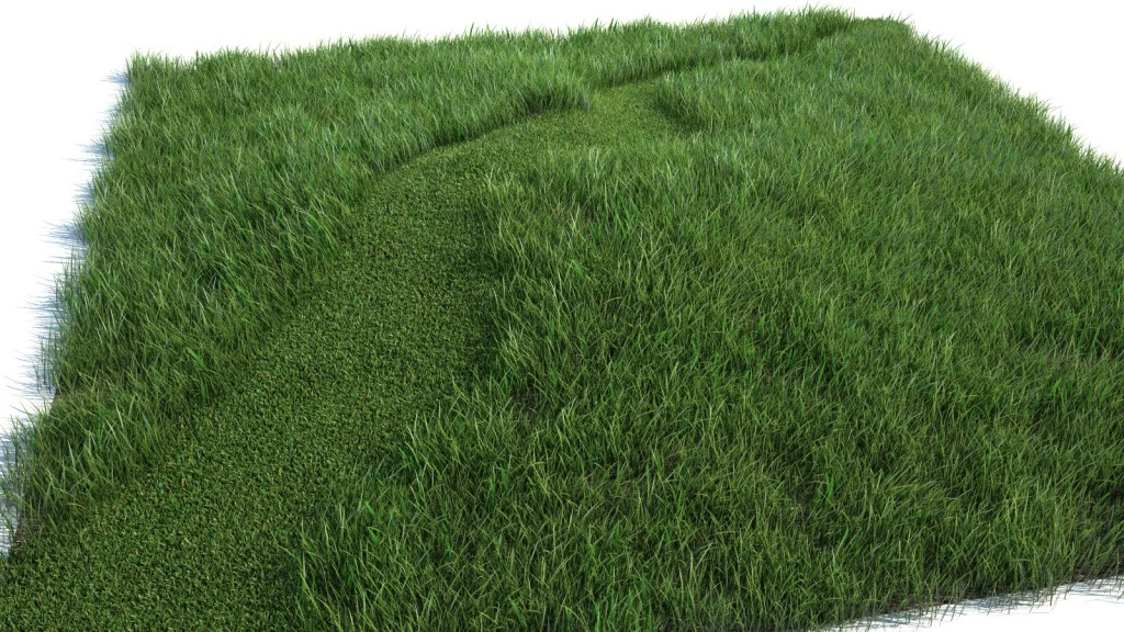 grass test_0001