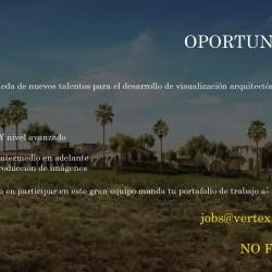 Vertex Studio | Oferta de Trabajo en México D.F.