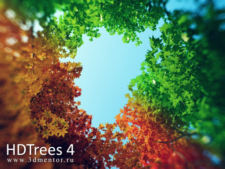 hdtrees_4_banner