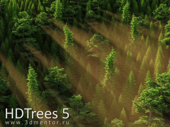 hdtrees_5_banner