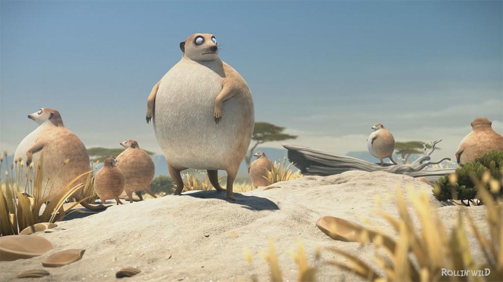 rollin_safari-meerkats