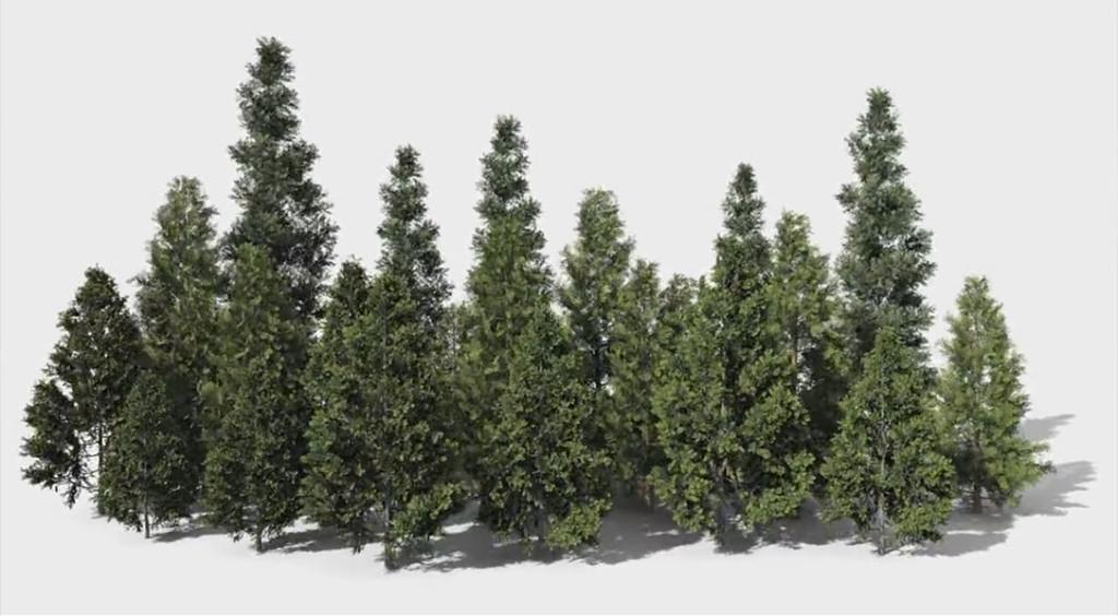 wind_dynamics_trees