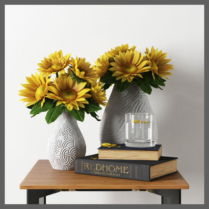 RedHome_SunFlowers_3d_model