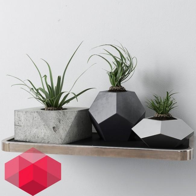 small_plant_redhine_visual