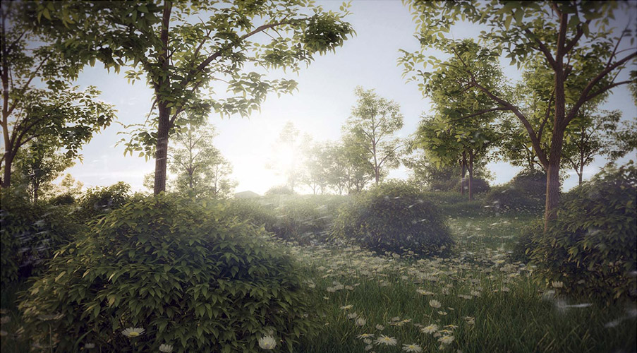 forest_pack_5_beta