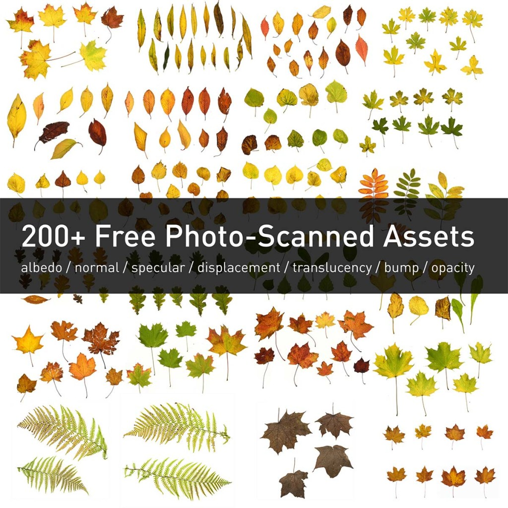 3d_scanned_leaves_free_pack_with_textures_02