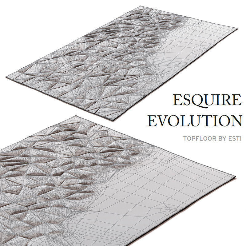 carpet-esquire-evolution-by-topfloor-3d-model-max-obj-fbx (1)