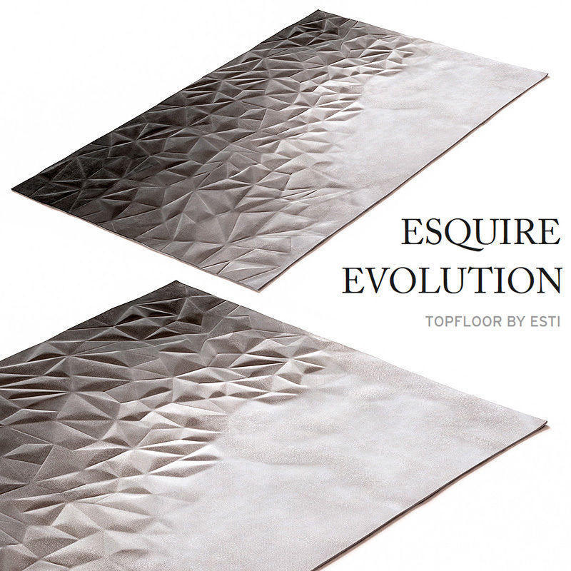 carpet-esquire-evolution-by-topfloor-3d-model-max-obj-fbx