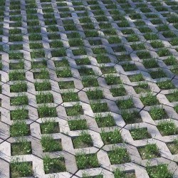 Cómo crear pavimento tipo adocésped con Forest Pack