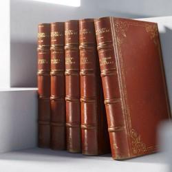 Modelos 3D Gratis CCCLX | Libros