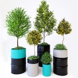 Modelos 3D Gratis CCCLXIX | Plantas
