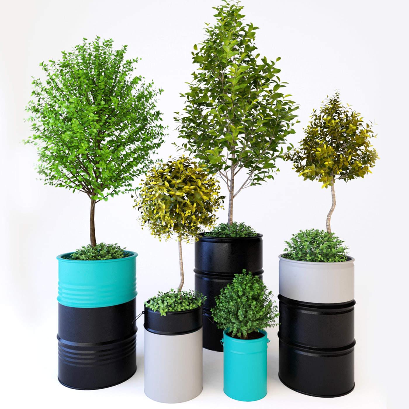 Modelos 3d gratis ccclxix plantas ejezeta for Plantas decorativas tipos