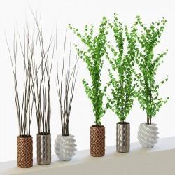 Modelos 3D Gratis CCCLXVII | Plantas