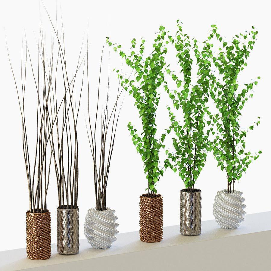 Modelos 3d gratis ccclxvii plantas ejezeta - Plantas decorativas de interior ...