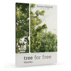 Recortes de árboles para post-producción