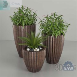Modelos 3D Gratis CDXXIV | Plantas