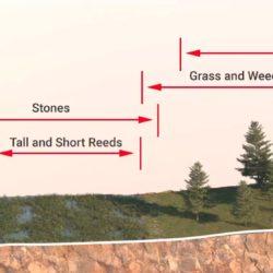Creación de ecosistemas basados en altura con Forest Pack Pro