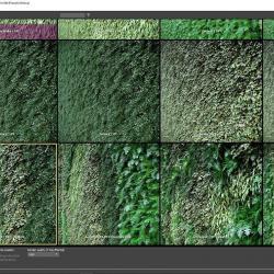 Cómo crear muros vegetales con Forest Pack 6