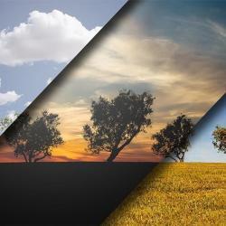 Cómo seleccionar elementos usando Alpha Channels en Photoshop