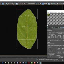 2 Formas de distribuir hojas en tus escenas