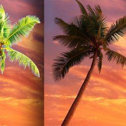 Cómo combinar recortes y fondos en postproducción con Photoshop