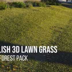 English 3D lawn grass tutorial