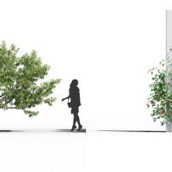 Free 3D Models DCXXII | Plants