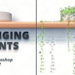 How to insert hanging plants with Photoshop