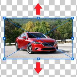 Resize an image without stretching it in Photoshop