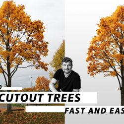 How to cut out trees in Photoshop
