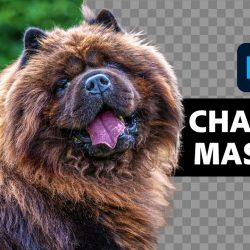 Masking with Alpha Channels